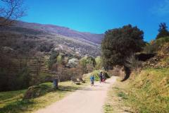 A mitad de camino, entre St Feliu de Pallarols i les Planes d'Hostoles