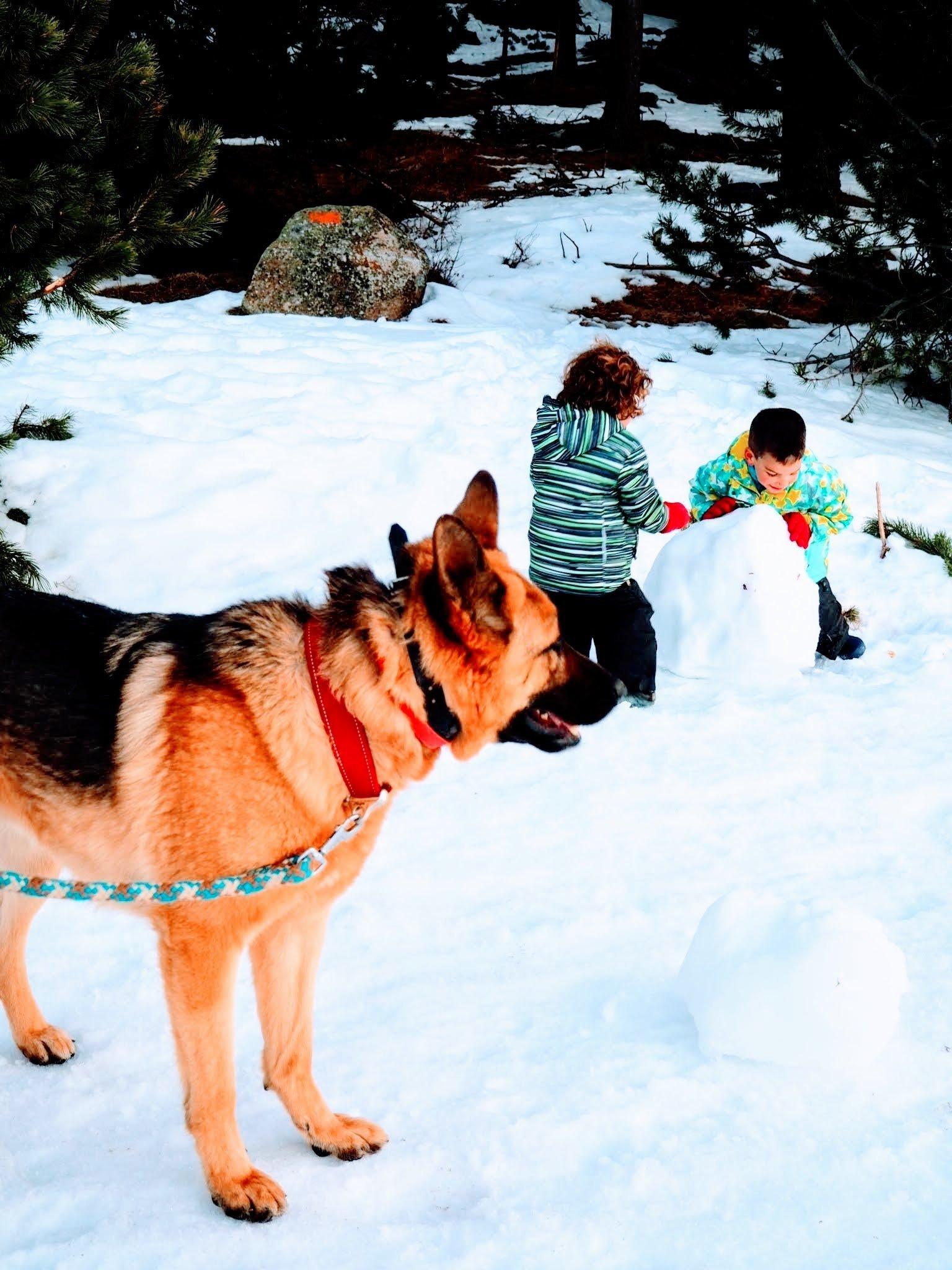 Font-Romeu, escapada de nieve 10 para familias