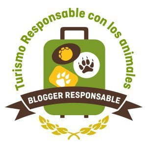 Responsible tourism with animals Blog