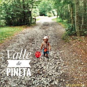 El Valle de Pineta, calma y bosques mágicos