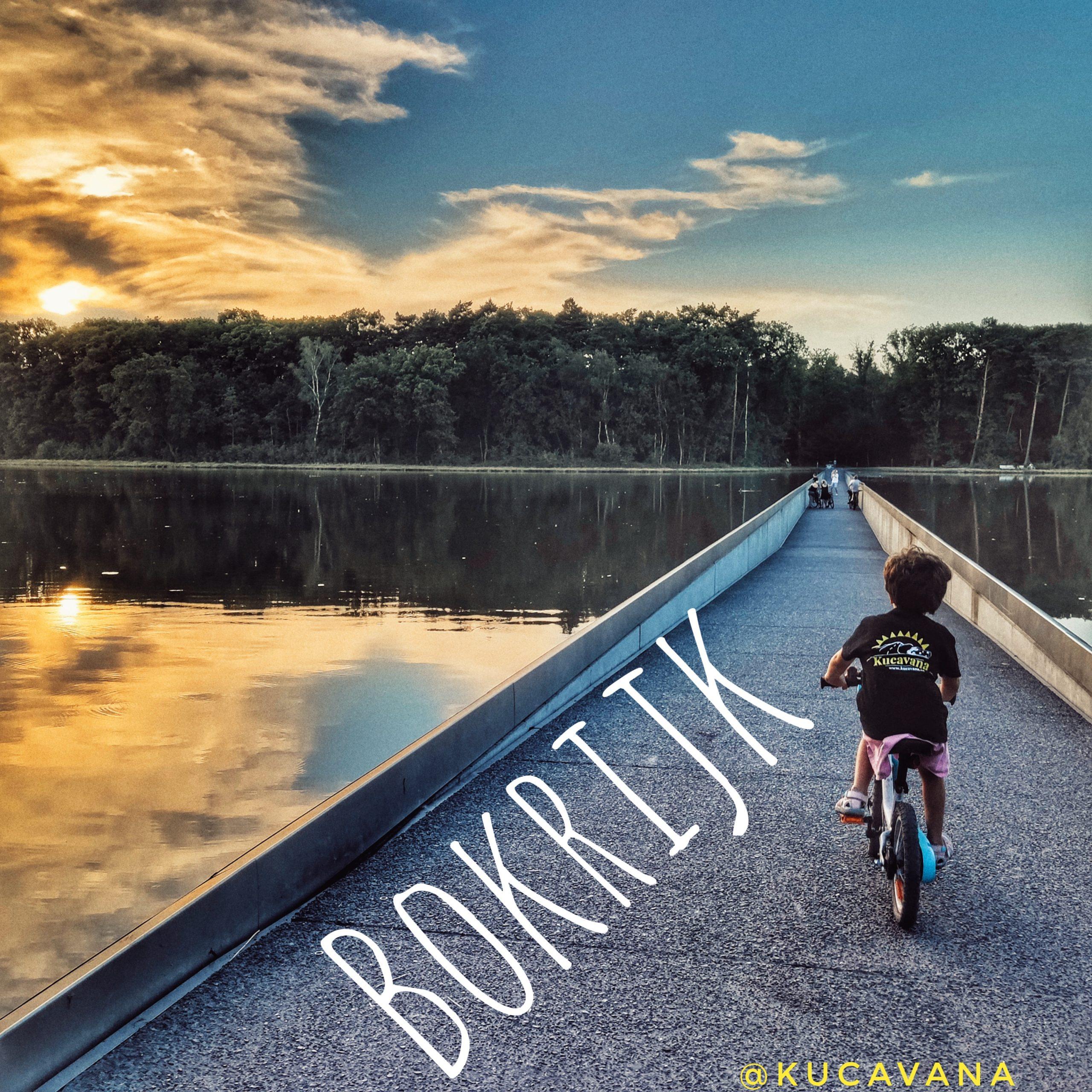 Bokrijk Fietsen Door d'Bomen, una ruta en bicicleta entre l'aigua