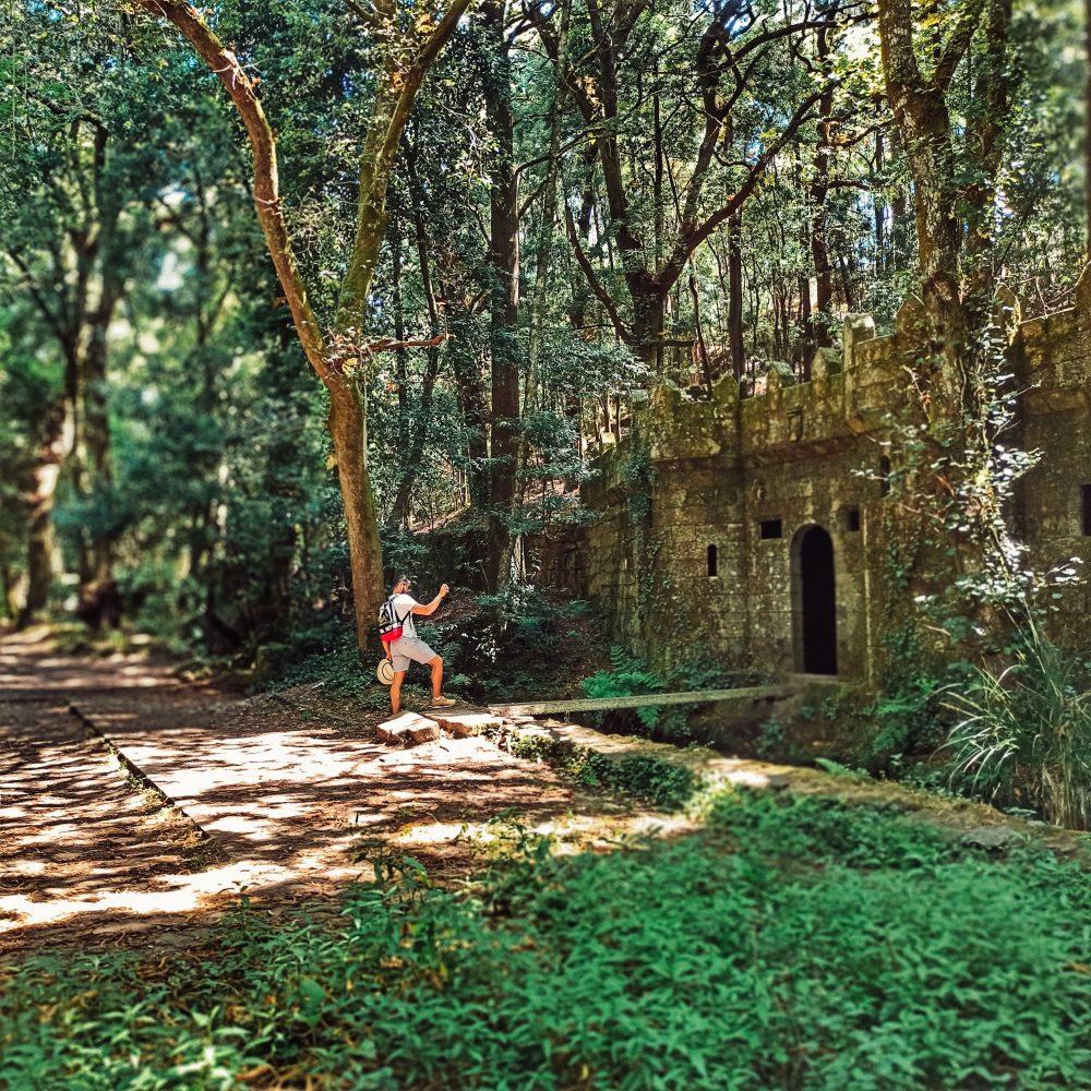 Bosc encantat a l'altura d'Aldán