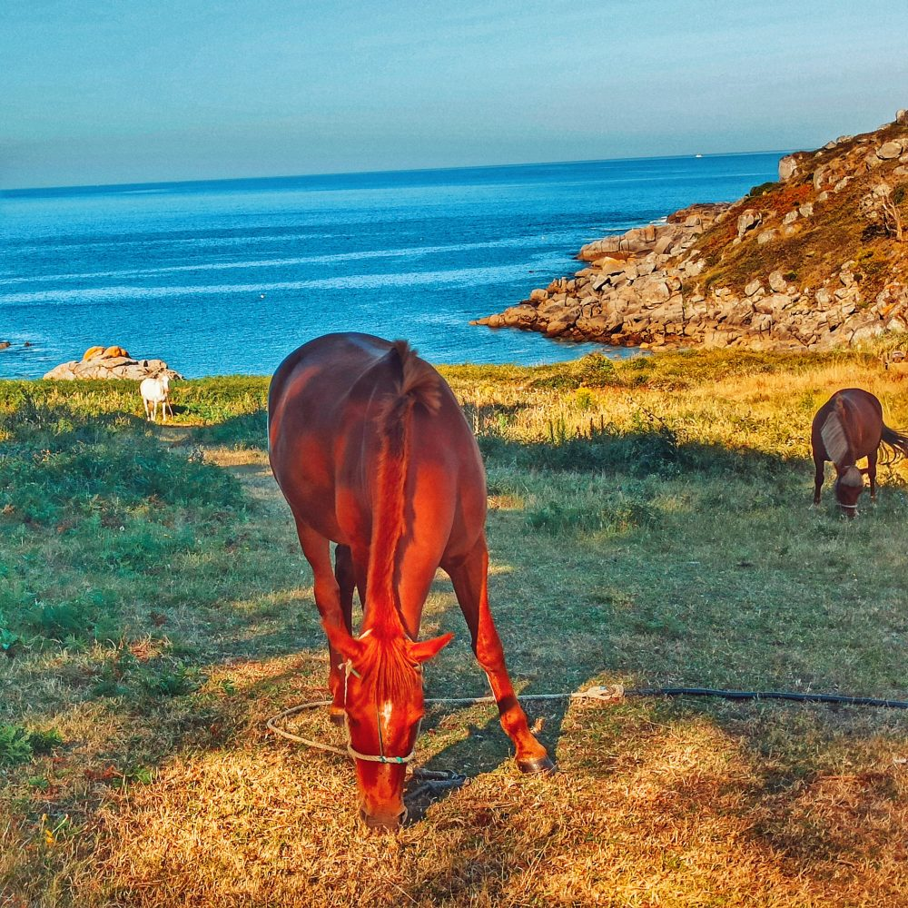 Playa de Ancoradouro en la ruta de Galicia en Autocaravana a la altura de Aldán