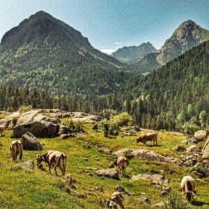 Vall de Boí con niños : Qué ver y dónde pernoctar