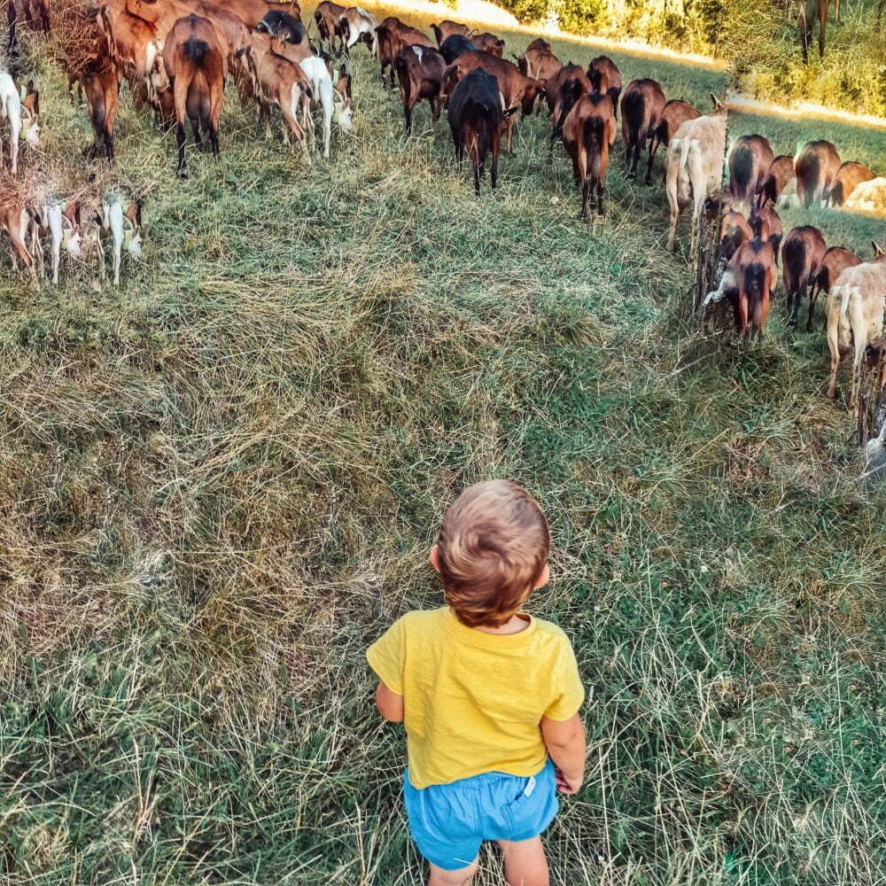 Valls d'Aneu con niños